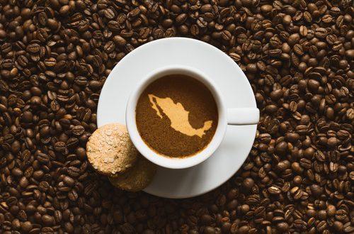 OC22 propose les meilleures solutions café en France